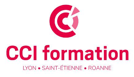 Formation Repreneur d'Entreprise (CCI Formation - Lyon Métropole)